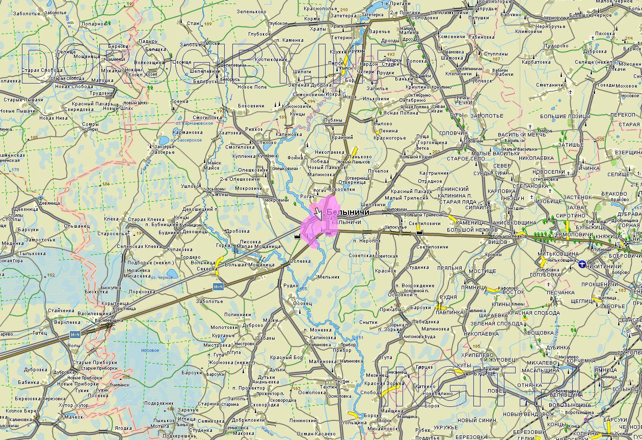 Карта Белыничского района