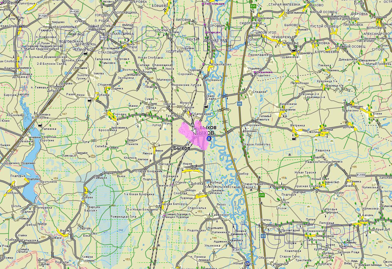 Карта Быховского района