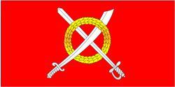 Флаг Чаусов и Чаусского района