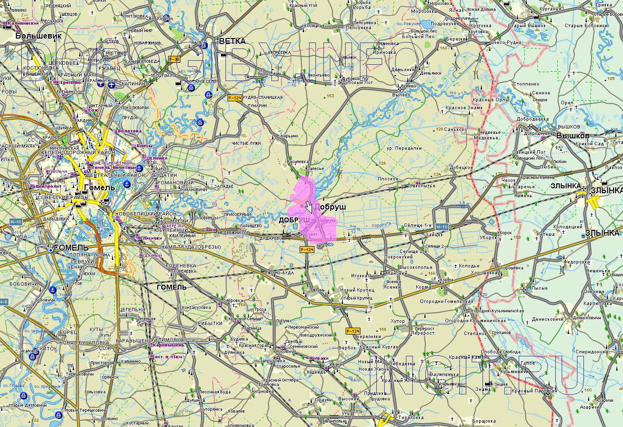 Карта Добрушского района