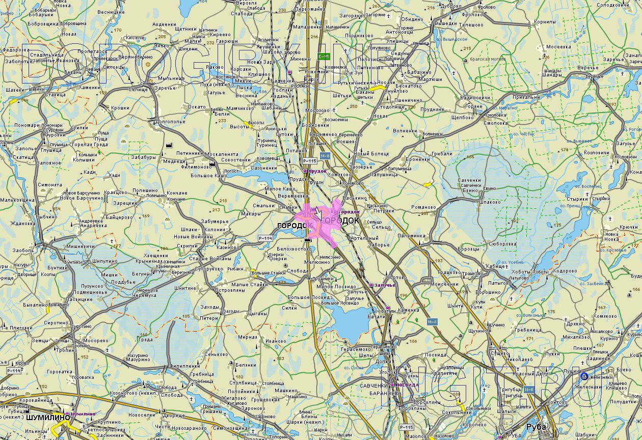 Карта Городокского района