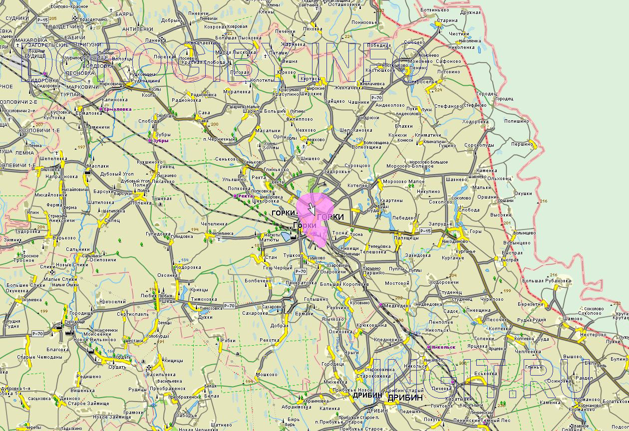 Карта Горецкого района