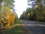 дорога в Поречье