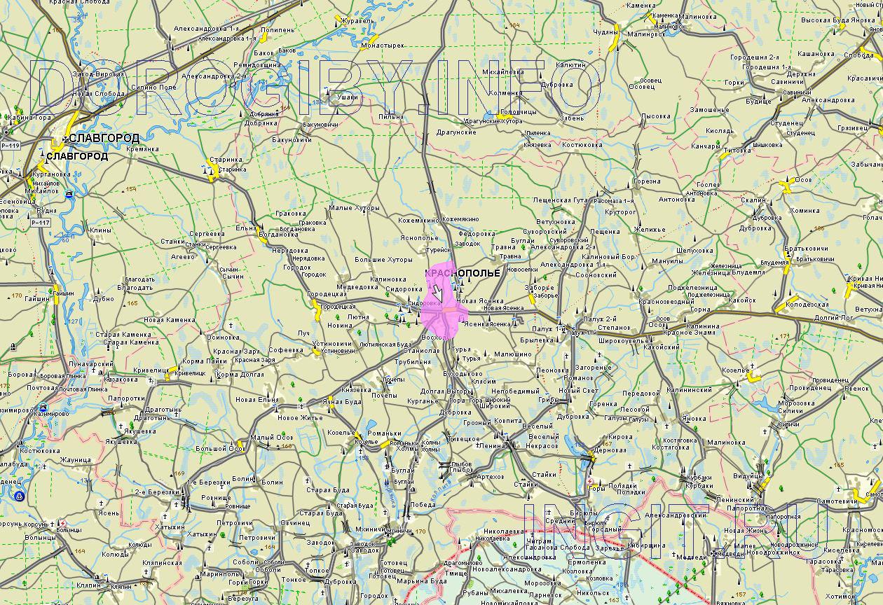 Карта Краснопольского района