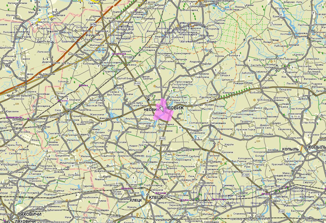 Карта Несвижского района