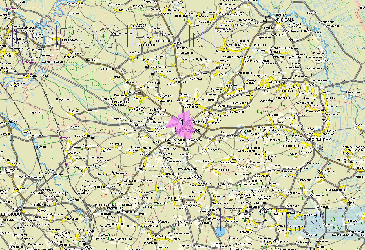 Карта Новогрудского района