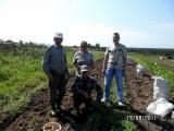 Уборка урожая на участке в д. Тепляки
