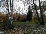 Vitebskaya osen v parke